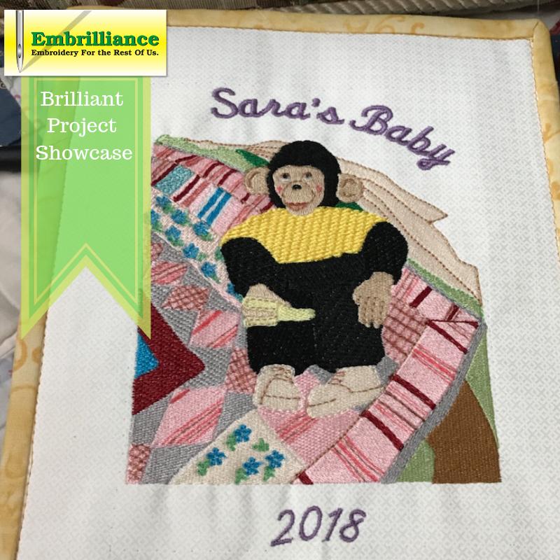 Sara's Baby Monkey – A Brilliant Project!