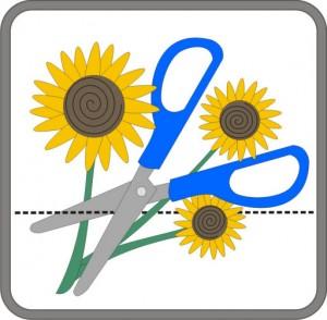 Embrilliance Enthusiast Logo